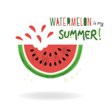 Watermelon is my summer! card on white background Stock Photography
