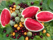 Watermelon and other fruits display Stock Images