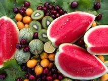 Watermelon and other fruits display Royalty Free Stock Photos