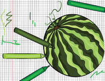 Watermelon painted on papper illustration Stock Images