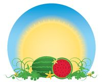 Watermelon Patch Royalty Free Stock Photography