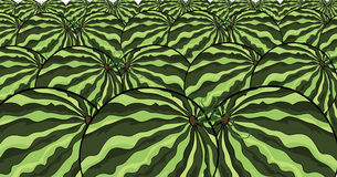 Watermelon pattern illustration Stock Images