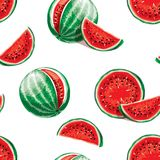 Watermelon pattern. Seamless vector background. Seamless vector pattern of watermelon on a white background. Elements for design. Juicy watermelon summer fruit Royalty Free Stock Images