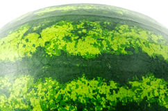 Watermelon. Photographed close-up on white background Stock Photography