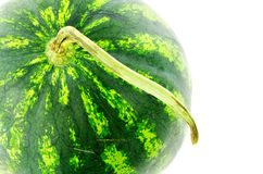 Watermelon. Photographed close-up on white background Royalty Free Stock Images