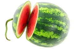 Watermelon. Photographed close-up on white background Royalty Free Stock Image