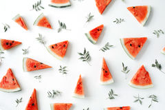 Watermelon pieces pattern on white background Stock Images