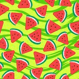 Watermelon pieces. Seamless pattern fruity. Vector illustration on green striped texture. Background vector illustration