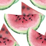 The Watermelon pieces sliced fresh. watercolor illustration Stock Image