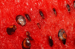 Watermelon pulp with seeds closeup Stock Photo