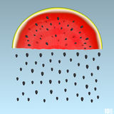 Watermelon rain. Art food. Vector illustration background Royalty Free Stock Images