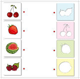 Watermelon, raspberries, cherries and strawberries. Educational Stock Photos