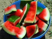 Watermelon rind eaten in summer in the Sun. Red Watermelon rind eaten in summer in the Sun stock photography