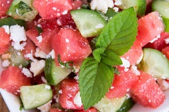 Watermelon Salad with Mint and Cucumber Stock Photography