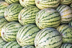 Watermelon Sale Stock Photography