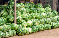 Watermelon for sale at market stall Royalty Free Stock Image