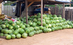 Watermelon for sale at market stall Royalty Free Stock Photos