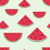 Watermelon seamless pattern Stock Image