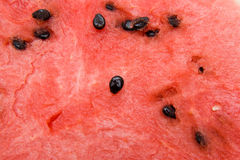 Watermelon with seeds Background. Close view of a watermelon with seeds Stock Image