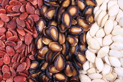 Watermelon seeds and pumpkin seeds Stock Images