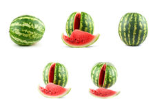 Watermelon set Royalty Free Stock Photos