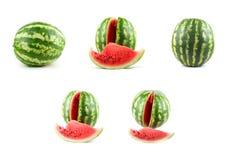 Watermelon set Royalty Free Stock Photos