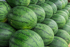 Watermelon. Set in a row on straw Royalty Free Stock Photos