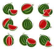 Watermelon set. Vector Royalty Free Stock Image