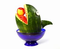 Watermelon shark Stock Photography