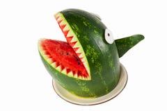 Watermelon shark Stock Image