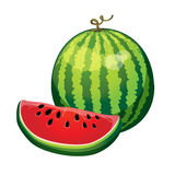 Watermelon with a slice cut isolated on white background. vector Stock Photo