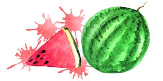 Watermelon and a slice of watermelon with juicy splashes. royalty free illustration