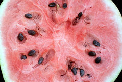 Watermelon slice many seeds closeup Stock Photos