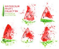 Watermelon slice set. Watercolor hand draw collection, slice and splashes. On white background Stock Photography