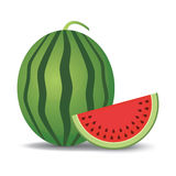 Watermelon and slice. Vector illustration Stock Photos