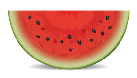 vector watermelon slice Stock Image