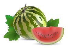 Watermelon with slices Royalty Free Stock Photo