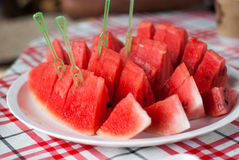 Watermelon Slices on dish Royalty Free Stock Image