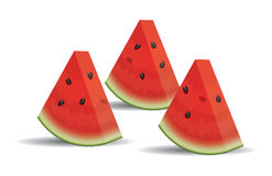 Watermelon slices. vector  Royalty Free Stock Images