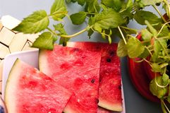 Watermelon slices and mint  Royalty Free Stock Image