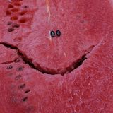 Watermelon with smiling face royalty free stock photos