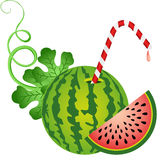Watermelon with Straw Stock Image