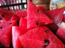 Watermelon in the summer stock photography
