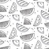 Watermelon summre fruit black white concept. Fern botanical scandinavian sketch pattern. Retro line art tropical print Stock Photos