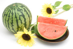 Watermelon and sunflower Stock Images