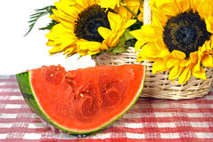watermelon and sunflowers Royalty Free Stock Photos