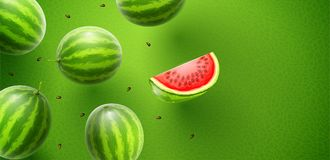 Watermelon sweet fruits flavour banner design Royalty Free Stock Photo