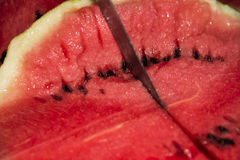 Watermelon. Taste of red watermelon, sweet and juicy Stock Images