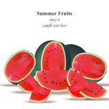 Watermelon tasty sweet summer background. Refreshing juicy Vector template Royalty Free Stock Image