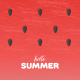 Watermelon texture background with Hello Summer letters vector illustration Royalty Free Stock Images